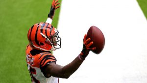 Cincinnati Bengals v Houston Texans